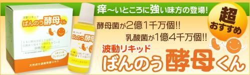20091217-banner01.jpg