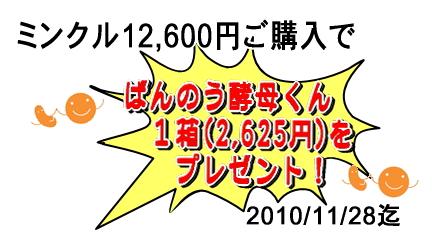 20101021-oil_set02.jpg